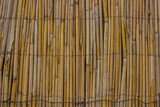 bamboo wall background texture concept with empty space for copy or text