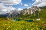 Frühling am Tappenkar in den Radstädter Tauern - 209259674