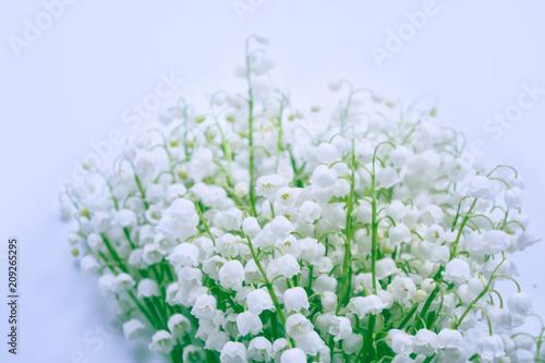 Fotobehang Lelietjes van dalen Spring landscape. flowers lily of the valley