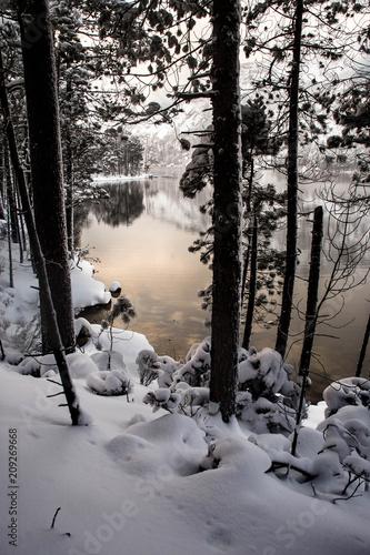 Foto Murales lac