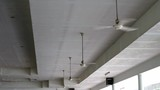 Ceiling fan rotate quickly - 209292879