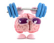 Vector 3d Brain strength - 209301006