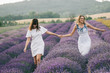 Beautiful sisters walking at lavender field, holding hands.