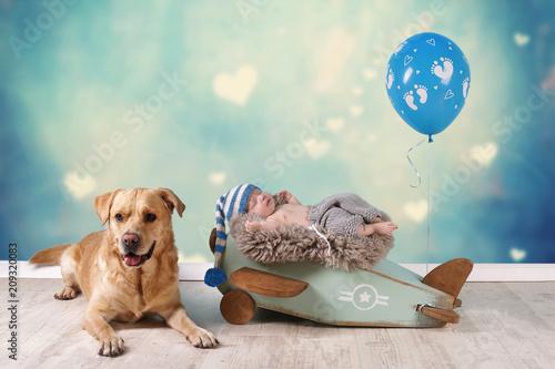 Baby mit Labrador