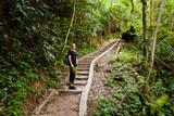 Cameron Highlands Parit Falls trekking - 209320823
