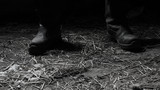 The maniac in black boots in the shed. - 209356214
