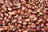 castagne caldarroste frutto autunnale - 209357060