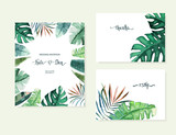 Exotic tropical palm tree. Frame border background. Summer vector illustration. Template set for card. Watercolor style - 209373691