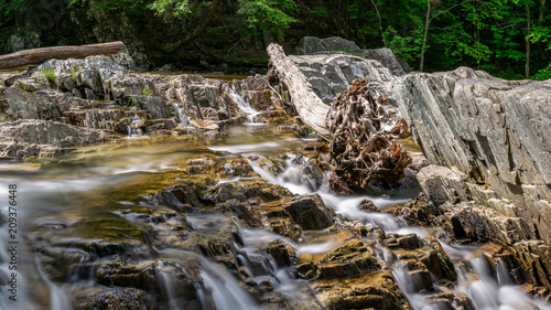 Trues Brook - Log over Cascades - 209376448