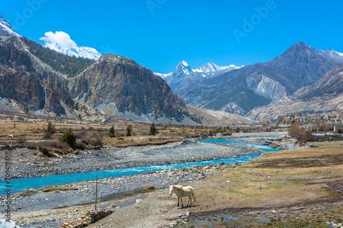 Foto Murales Mountain landscape with Bagmati river, Nepal.