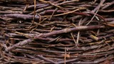 willow twig basket