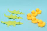 Challenge concept, rubber ducks are facing crocodiles.  - 209430424