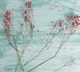 dried flowers, wood background, mint color, still life - 209435883