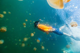 Child snorkeling in Jellyfish Lake - 209449847