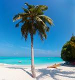 Perfect tropical beach - 209450839