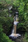Ness Woods Waterfall