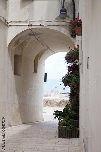 portico fiorito © Ciriaco