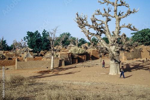 Fotobehang Baobab Petit village du pays dogon