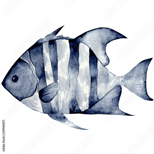 Tropical fish on a white background.Watercolor painting. Handmade drawing. It can be used for postcards, invitations, menus, flyers,gifts ets. - 209461871