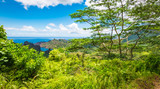 Tropical environment with green trees and ocean in the background. Landscape of Nuku Hiva, Marquesas Islands. - 209520010