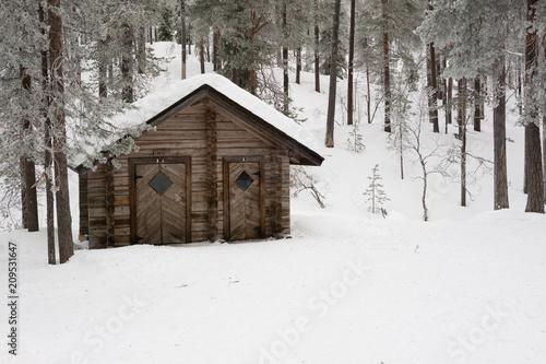 Foto Murales cabin