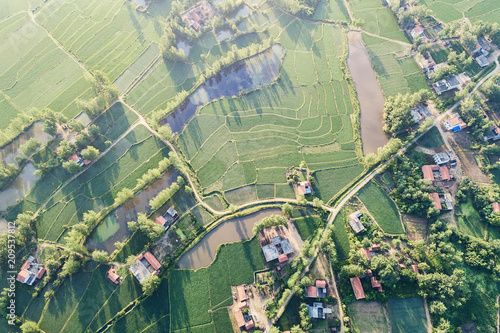 Aerial scenery of Rural paddy fields