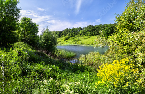 Fotobehang Pistache River bank with yellow flowers and a green grass