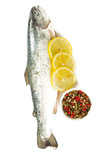 river trout isolated on white background - 209562660
