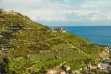 Mediterranean coastal landscape - 209588631