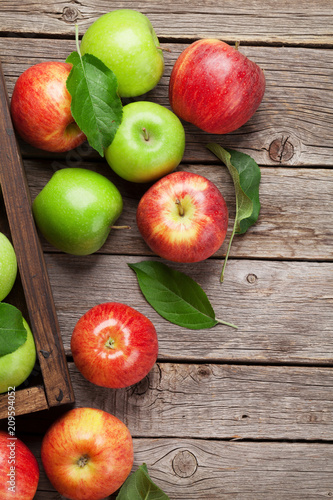 Green and red apples - 209594052