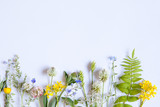 wildflowers on white background - 209599048