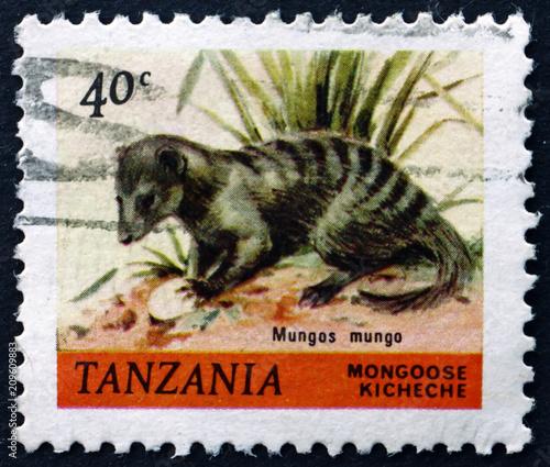 Fotobehang Zanzibar Postage stamp Tanzania 1980 Banded Mongoose, Animal