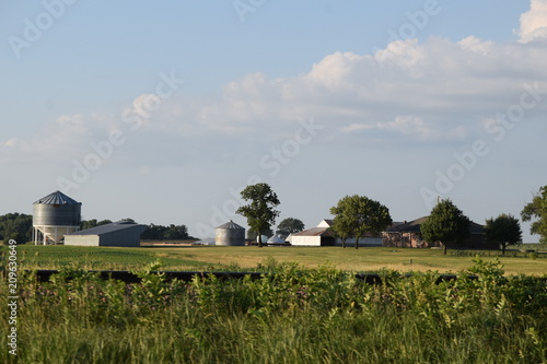 Foto Murales Farm