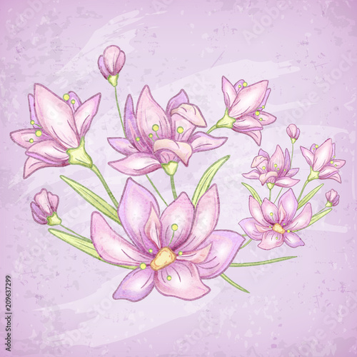 Flower purple card with flowers branch and leaves. Hand drawn. - 209637299