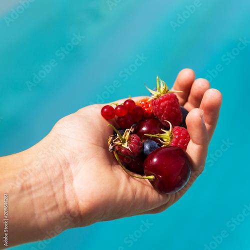 Foto Murales fruits rouges dans la main