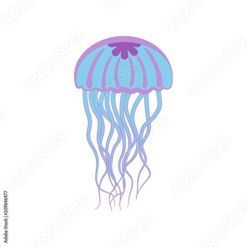 Fototapeta Jellyfish vector illustration