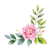 Watercolor vector hand painting illustration of peony flowers and green leaves. - 209647215