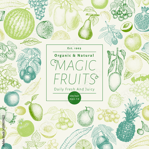 Fruits and berries hand drawn vector illustration. Retro engraved style banner design. Can be use for menu, label, packaging, farm market products.
