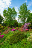 Beauty of nature. beautiful colorful garden - 209660684