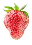 Strawberry isolated on white background - 209683237