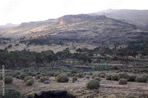 Fotobehang Grijs Ethiopie - Montagne Siemen