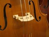チェロ(駒、f字孔、弦) - 209695229
