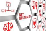 NET NEUTRALITY concept cell background 3d illustration - 209712608