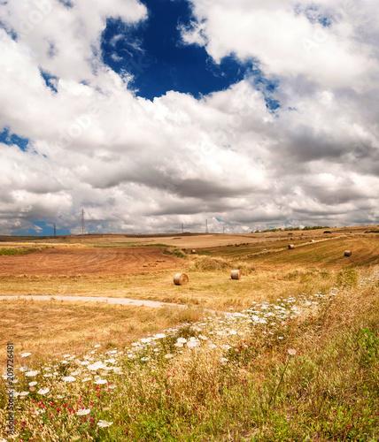 Sardynia, południowy wiejski krajobraz