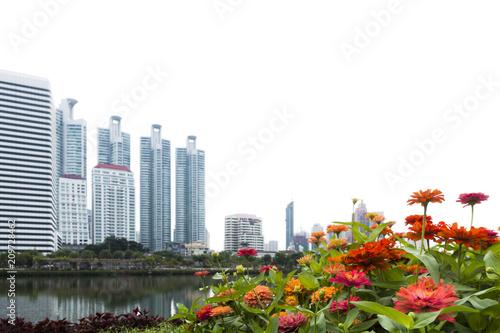 Fotobehang Bangkok Flowers in the park