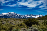 View of the snow capped Dragon's Back from Twin Lakes Road, Mono County, California