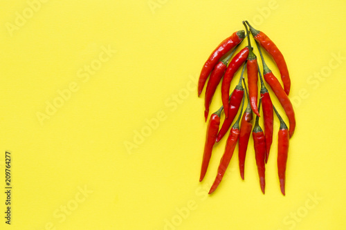 Red chili pepper pods on bright yellow background - 209764277