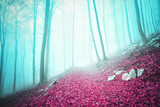 Fantasy colored autumn season foggy forest scene with path.  - 209770269
