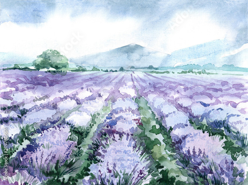 watercolor lavender field. scenic landscape of the Provence © Anastasiia