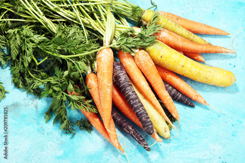 pile of carrots. Crate of mixed fresh harvested colorful carrot.